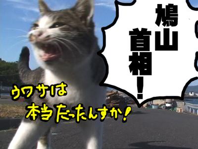 Hatoyamasyusyou_2