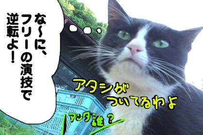 Mao05_2