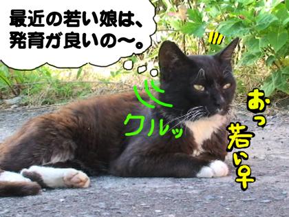 Ojiji03_2