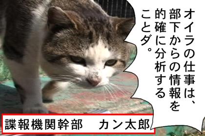 Kyori11