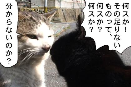 Kyori88_2