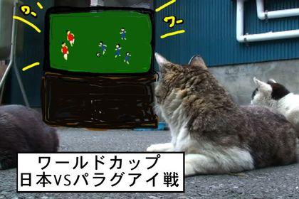 Fifa0001_2