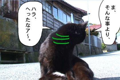 Kuro11_2