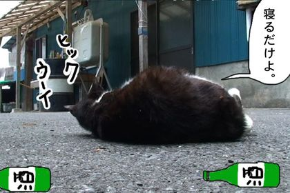 Osake5