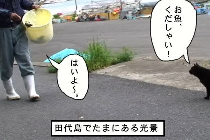 Obon01_3