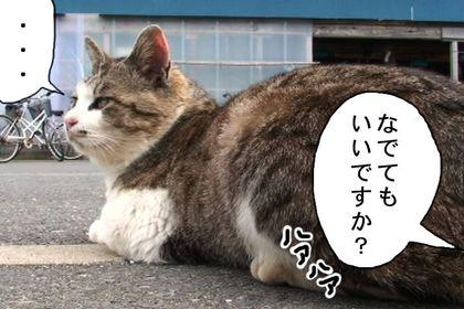 Fusa04