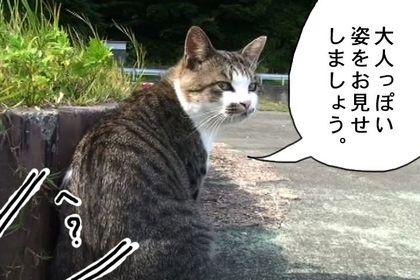 Daruma05_4