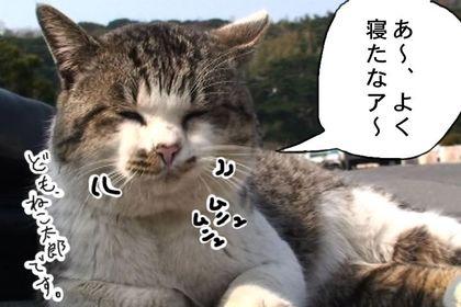 Nesugi002_3