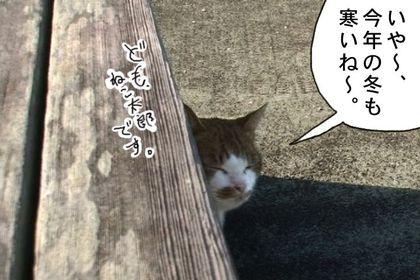Kotatsu1_2