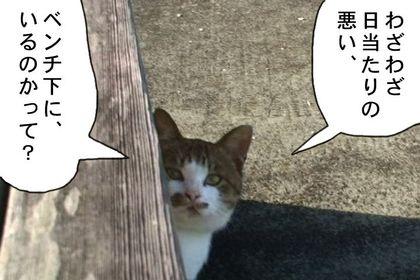 Kotatsu4_3