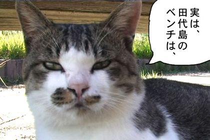 Kotatsu5_4