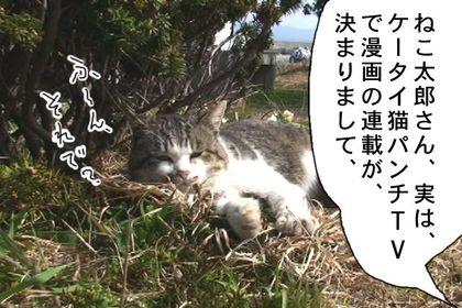 Rensai103