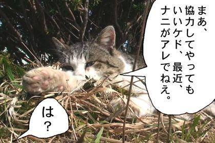 Rensai105_2