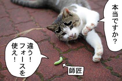 Musineko03