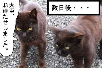 Daijin011_2