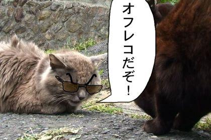 Daijin014_2
