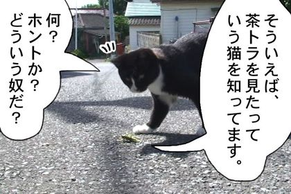 Edo19_2