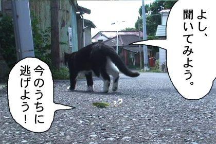 Edo21_2