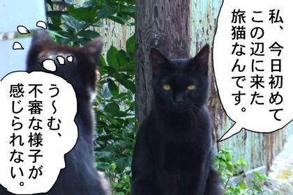 Edo24_2