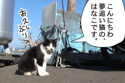 Hanakoyume01