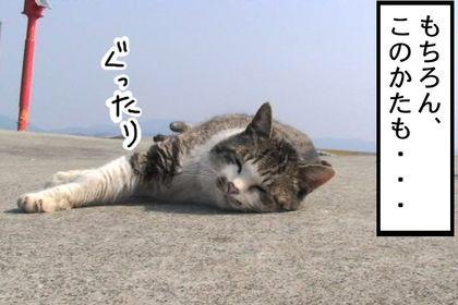 Kiainekotaro003_2