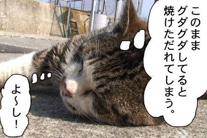 Kiainekotaro006_3