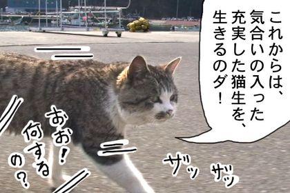 Kiainekotaro008_2