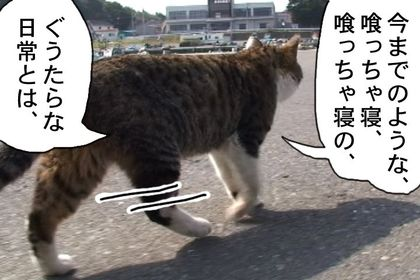 Kiainekotaro009_2