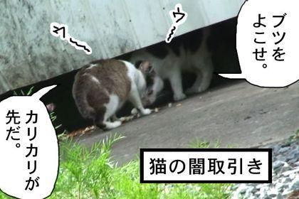 Yami004_2