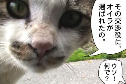 Panda005_2