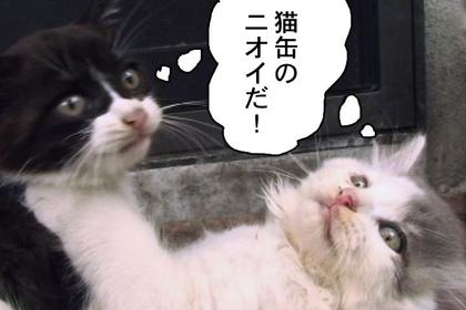 Sasuga006_2