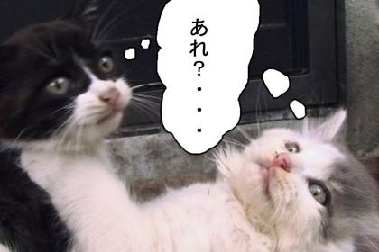 Sasuga007_2
