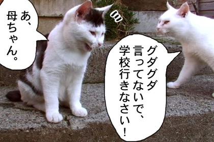 Kyouikumondai0006_2