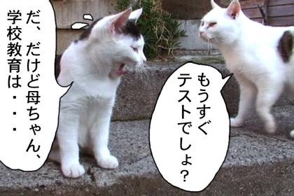 Kyouikumondai0007_2