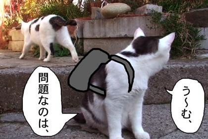 Kyouikumondai0009