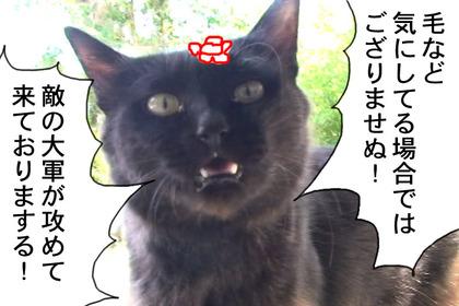 Nobunaga010
