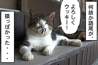 Hideyoshi006_2