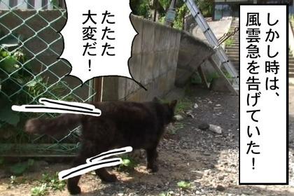 Hideyoshi007_2