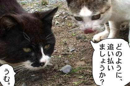Keikai004_3