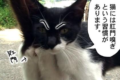 Mayumi002_2