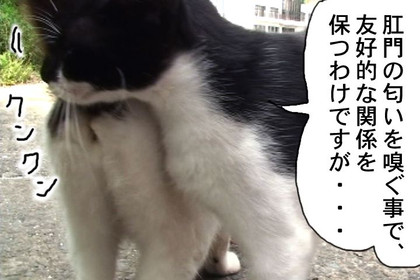 Mayumi003_2