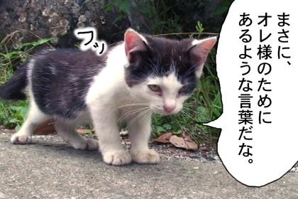 Seitai309_2