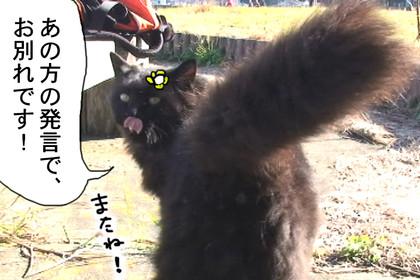 Seitai312_2
