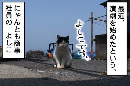 Yoshiko001