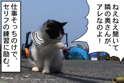 Yoshiko002