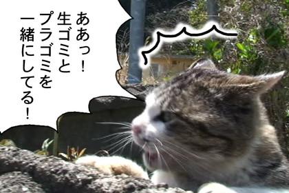 Gomi003_2