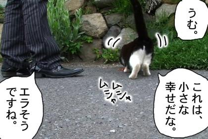 Sasu006_2