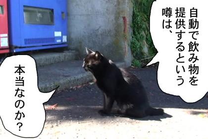 Jihanki003_2