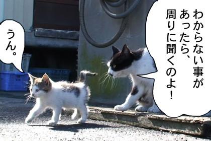 Kotaro002_2