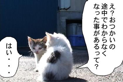 Kotaro004_3